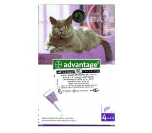 advantage לחתול  גדול