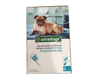 advantage לכלב קטן / בינוני