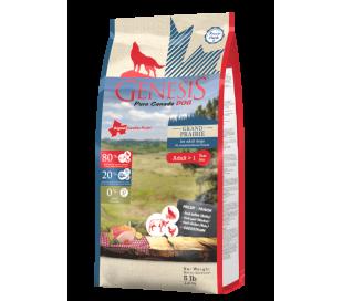 """ג'נסיס כלב ובגר 2.27 ק""""ג ללא דגנים - Genesis GRAND PRAIRIE מזון יבש לכלב בוגר"""